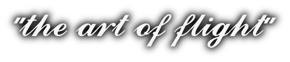 the_art_of_fligh_rotors1